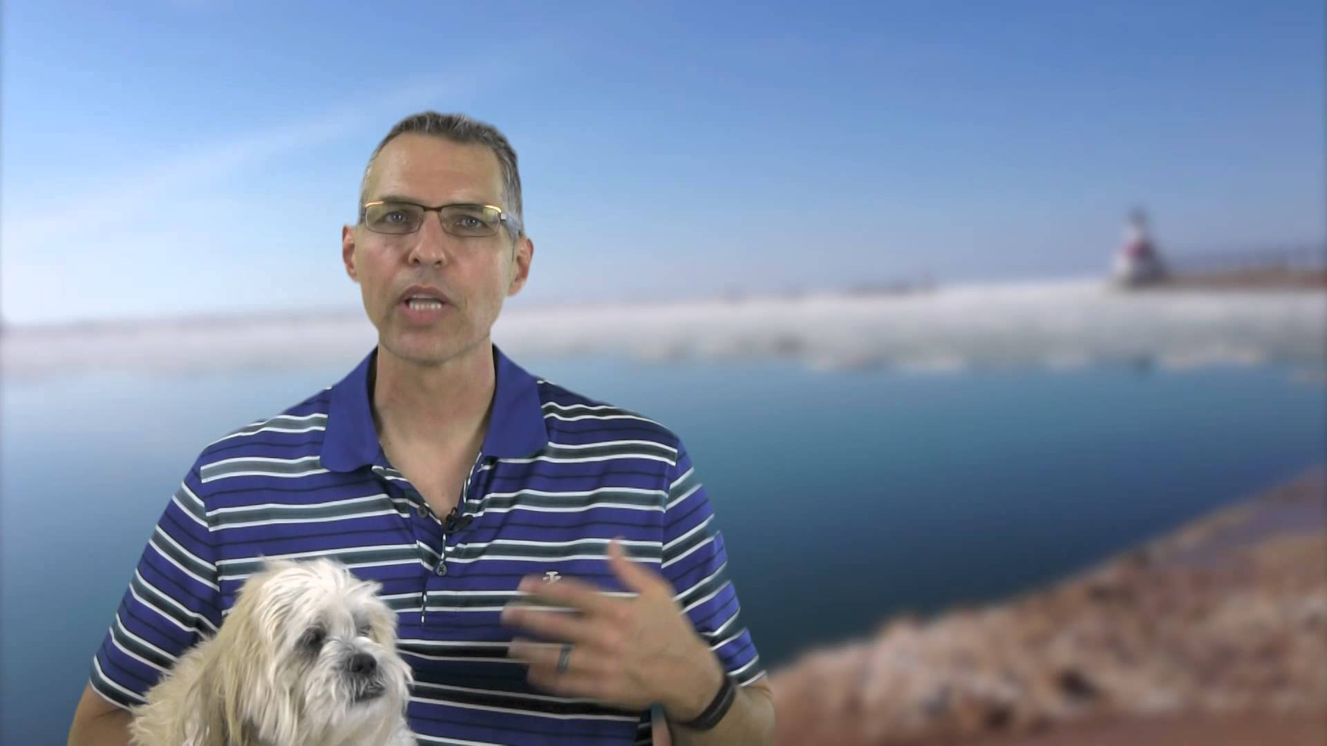 5 tips to avoid a dog bite injury | Indiana personal injury lawyer
